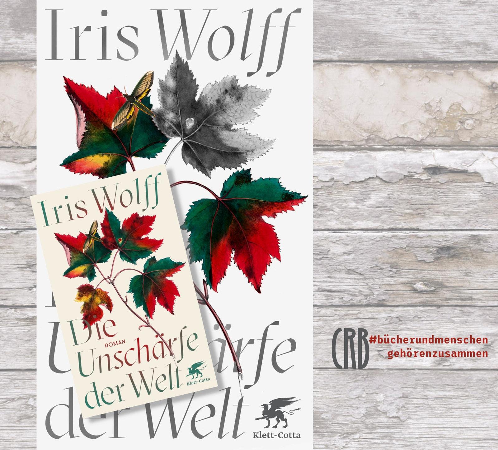 Die Unschärfe der Welt | Iris Wolff